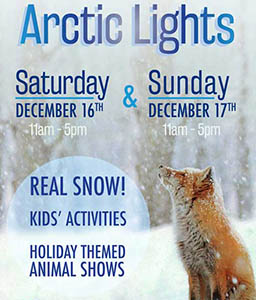 image of flyer for America's Teaching Zoo: Arctic Lights - December 16 & 17