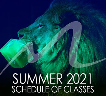 blue lion with summer 2021